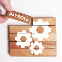 payroll-outsourcing-company-in-egypt